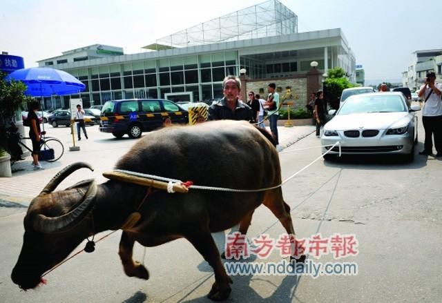 En Chine , les propriétaires se font entendre