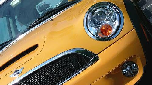 Mini Mellow Yellow