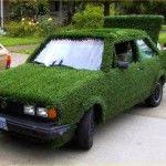 green Jetta