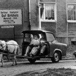trabant_horse_2