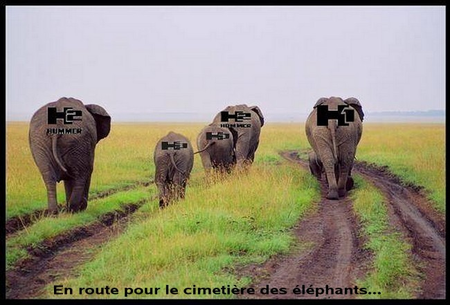 Hummer, la fin et direction le cimetière des éléphants