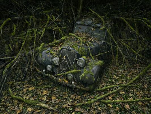[GALERIE] Les épaves par Peter Lippmann  ParadiseParking_08_peterlippmann-533x400