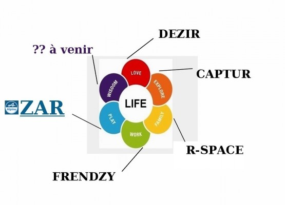 http://cdn.blogautomobile.fr/wp-content/uploads/2012/04/la-fleur-Renault-des-concepts-cars-555x400.jpg
