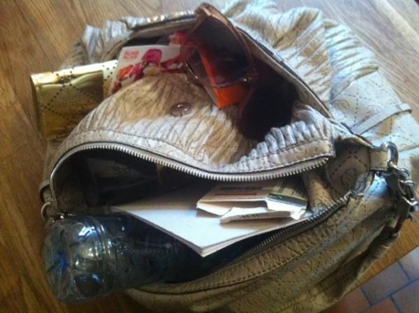 sac à main de nana
