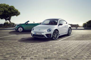 Beetle - 03