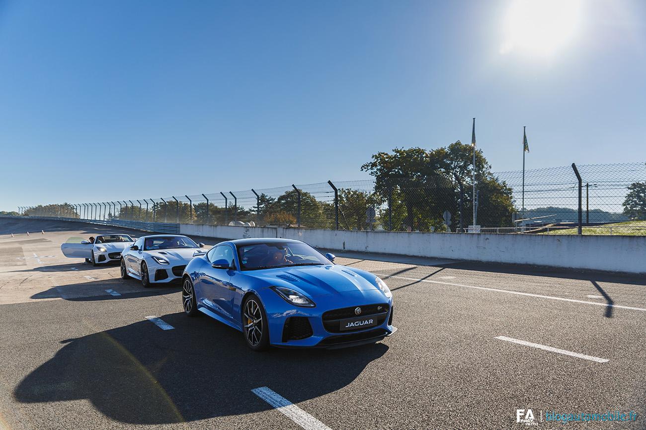 Jaguar F-Type SVR - JLR Festival